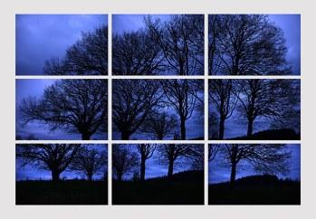 Simon_Mathey_100cm x 80 cm_4_trees