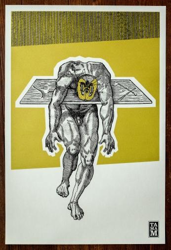 TAMAM- Série-Anatomie1