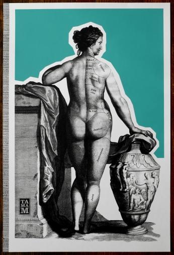 TAMAM- Série-Anatomie2